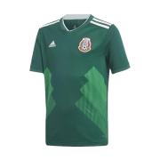Áo đội tuyển mexico sân nhà