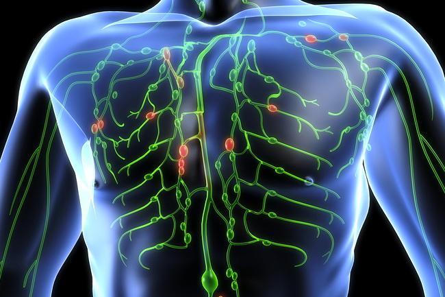 Trắc nghiệm cơ thể bị nhiễm độc