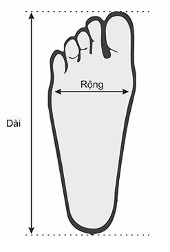 Hướng dẫn đo size giày bóng đá